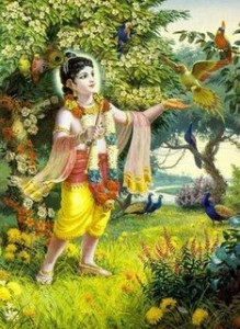 krishna_in_forest